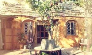 Peanut House