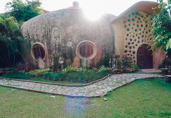 Snail Dome at Leafy Greens Clay House Chiang Mai